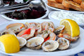 Fresh clams served with lemon Royalty Free Stock Photo