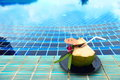 Fresh Coconut from tree ready to drink with straw, place nicely Royalty Free Stock Photo