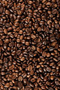 Fresh coffee beans Royalty Free Stock Photos
