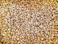 Fresh coffee seed before roast