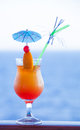 Fresh cold cocktail a delicious orange Royalty Free Stock Photos