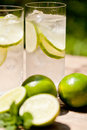 Fresh cold refreshment drink mineral water soda with lime and mint Royalty Free Stock Photo