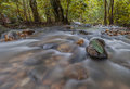 Fresh and cold river in the jugle Royalty Free Stock Photo
