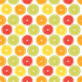 Fresh colorful citrus fruits seamless pattern orange lemon grapefruit lime Stock Images
