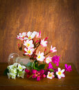 Fresh and colorful flower on wood table still life Royalty Free Stock Photography