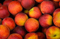 Fresh colorful peaches on a weekly street market stall Royalty Free Stock Image
