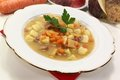 Fresh cooked Turnip stew Royalty Free Stock Photography