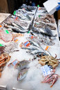 Fresh cool fish on ice at street market Royalty Free Stock Photos
