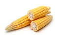 Fresh corns Royalty Free Stock Photography