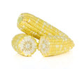 Fresh corns isolate on white background Royalty Free Stock Photo