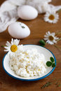 Fresh cottage cheese Royalty Free Stock Photography