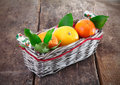 Fresh country oranges in basket Stock Photos