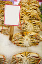 Fresh crab for sale Stock Images