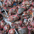 Fresh crabs sold in the market mornings Stock Photography