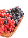 Fresh cranberries and grapes in basket isolated on white background Royalty Free Stock Photos
