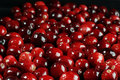 Fresh cranberry Stock Photo