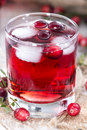 Fresh cranberry juice made with ice Royalty Free Stock Photography
