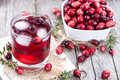 Fresh cranberry juice made with ice Royalty Free Stock Images