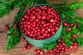 Cranberry Or Lingonberry In A ...