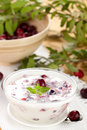 Fresh cranberry yogurt Stock Photo