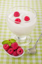 Fresh creamy natural yogurt with raspberries on a checkered tablecloth Stock Photos