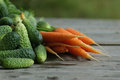 Fresh crop of carrots and cucumbers Royalty Free Stock Photo
