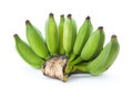 Fresh cultivated banana raw Stock Image