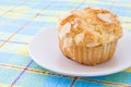 Fresh cup cake Stock Images
