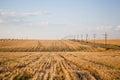 Fresh cut hay field Royalty Free Stock Photo