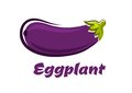 Fresh dark violet eggplant vegetable ripe or aubergine in cartoon style with smooth skin and sappy star shaped leafy calyx Stock Photography
