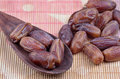 Fresh dates Royalty Free Stock Photo