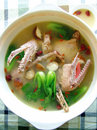 Fresh delicious duck soup Stock Image