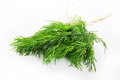 Fresh dill on white background Stock Photo