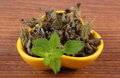 Fresh and dried lemon balm in bowl on wooden table herbalism healthy yellow sedative herbs concept for healthy nutrition Stock Photography