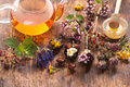 Fresh and dried medicinal herbs and herbal tea Royalty Free Stock Photo