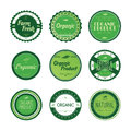 Fresh eco friendly green theme label set Royalty Free Stock Photo