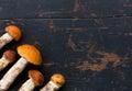 Fresh Edible wild Mushrooms orange-cap Boletus (Leccinum aurantiacum) On the Old Black Wood Background Royalty Free Stock Photo