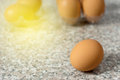 fresh egg on plastic tray Royalty Free Stock Photo