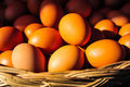 Fresh eggs in the basket for sale Royalty Free Stock Photo