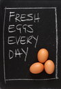 Fresh eggs every day three brown chicken on a blackboard next to the phrase Stock Photography