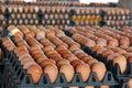 Fresh eggs from farm Royalty Free Stock Photo