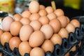 Fresh eggs on tray at asian street market Royalty Free Stock Photo