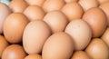Fresh eggs on tray at market Royalty Free Stock Photo