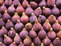 Fresh figs display Royalty Free Stock Photo