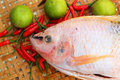 Fresh fish in the basket for cooking Stock Image