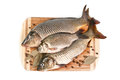 Fresh fish on the cutting board with spices white background Royalty Free Stock Photo