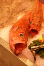 Fresh fish with large open mouths paris Royalty Free Stock Images
