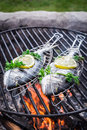 Fresh fish with lemon and herbs for grilling in summer Stock Photo