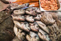 Fresh fish on market Royalty Free Stock Photo