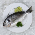 Fresh fish on a plate from above Royalty Free Stock Photo